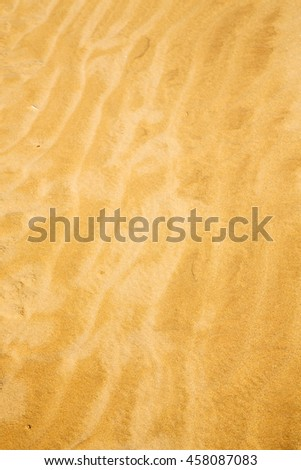 the brown sand dune in the sahara morocco desert