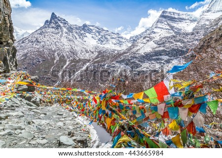 The Buddhist tibetan prayer flags on the top of mountain in Daocheng, Sichuan Province, Tibet of China.