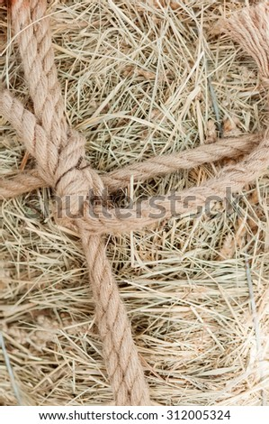 The bunch of hay is tied up by a thick rope a cord. - stock photo