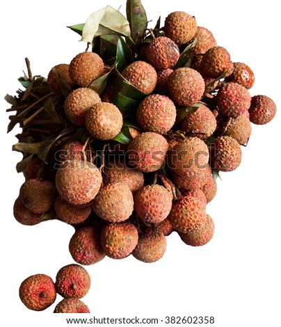 The bunch of litchi isolated on white. The lychee (Litchi chinensis) is a tropical and subtropical fruit tree native to southern China and Southeast Asia.  - stock photo