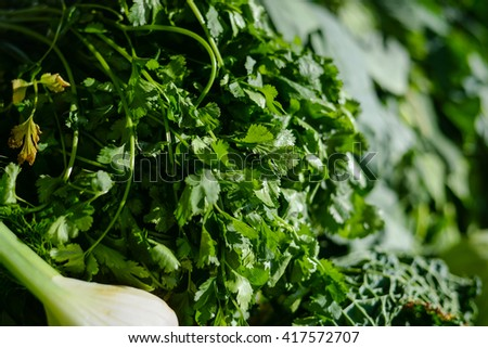 The bunch of parsley on a stall of market