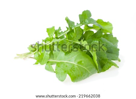 The Bunch of Salad Rocket, Isolated on White - stock photo