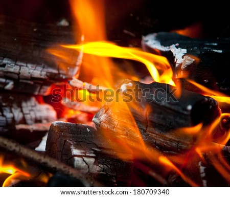 The burning fire - stock photo