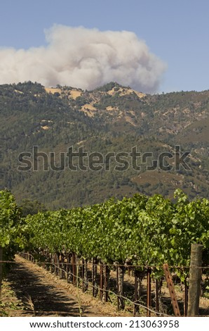 The Butts Fire in Pope Valley over shadows the vineyards and wineries of California's Napa Valley - stock photo