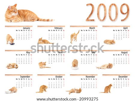 The calendar 2009 the new year with the cat, Monday start
