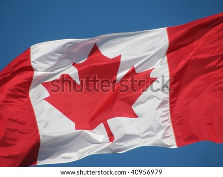 The Canadian Maple Leaf waving against a bright blue sky. - stock photo
