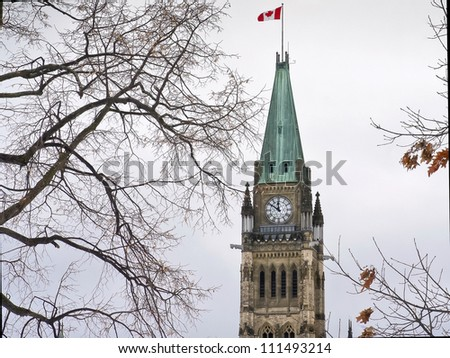 The canadian Parliament with twisted branches in the sky at lunchtime on a crisp winter day.