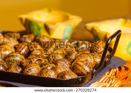 The canned snails are a typical Catalan dish in spain - stock photo