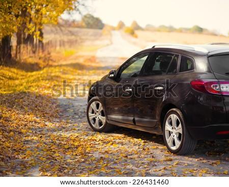 The car on the nature near autumn park - stock photo