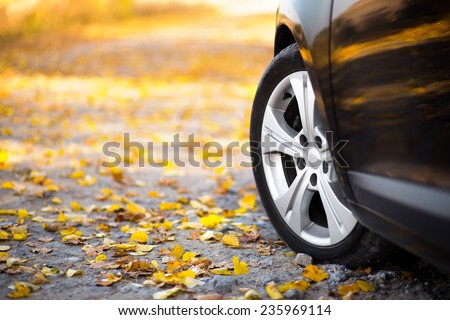 The car on the nature. Wheels and tyres closeup near autumn park - stock photo