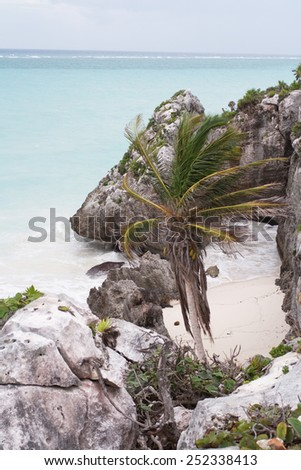 The Caribbean sea in Tulum, Mexico.