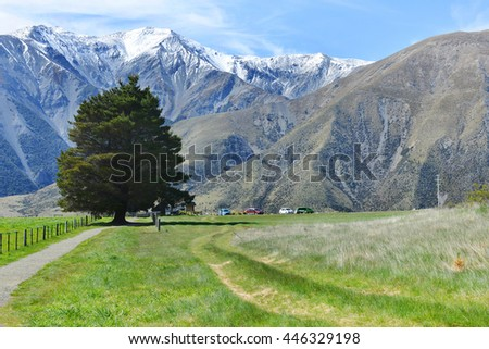 The Castle hill. Southern Alps. Arthurs Pass. New Zealand