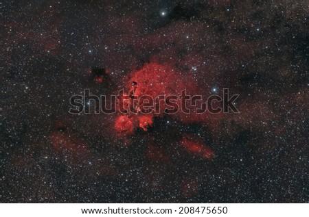 The Cat's Paw Nebula - stock photo