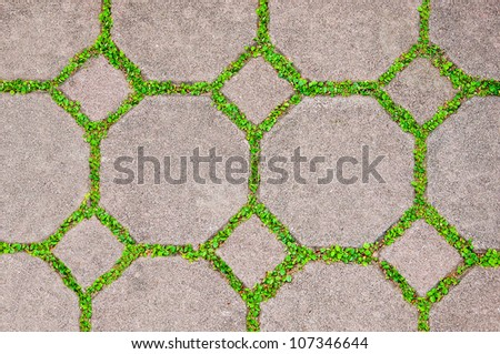 The Cement brick between green grass background - stock photo
