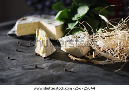 The cheese on the black surface - stock photo