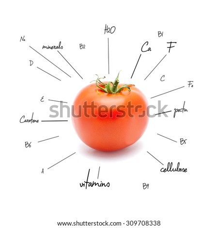 The chemical composition of tomato on the white background - stock photo