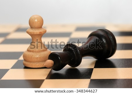the chess pieces on the Board - Mat