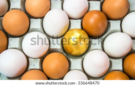 The chicken egg golden Eggs put on the tray represent the food packaging and food concept related idea.  - stock photo