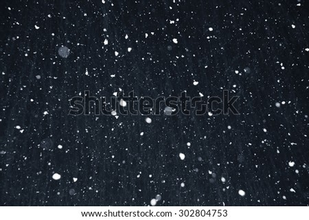the christmas snowfall in the evening, natural photography