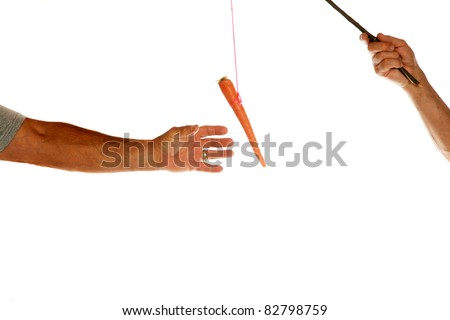 "The classic business metaphor of ""carrot on a stick"" isolated on white with room for your text - stock photo"