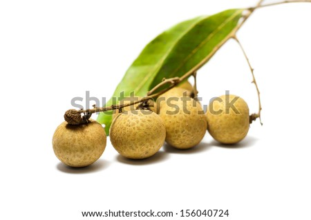 The close up longan isolated on white background