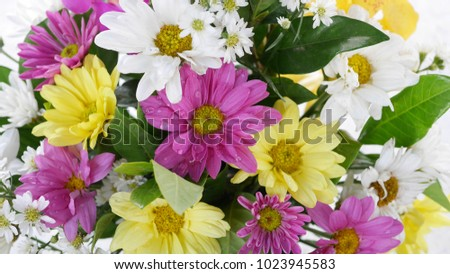 The closed up colorful cosmos flower bouquet. The picture concepts are white, yellow, pink, violet, green, valentine, gift, girlfriend, giving.