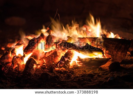 the coals of a campfire in the forest closeup - stock photo