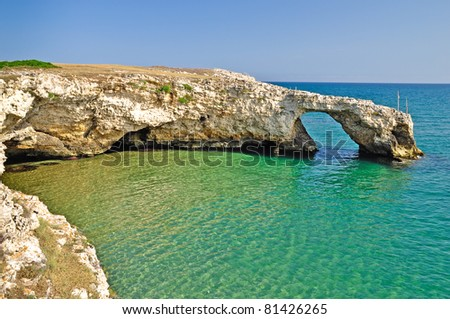 The coast of Gargano national Park, near Sfinale, in Apulia, Italy.