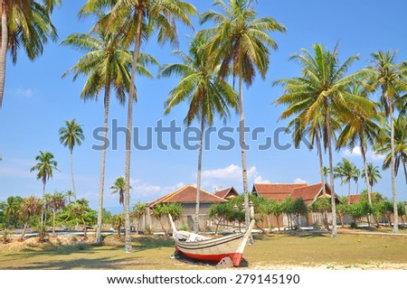 The coconut trees and wooden boat under blue sky