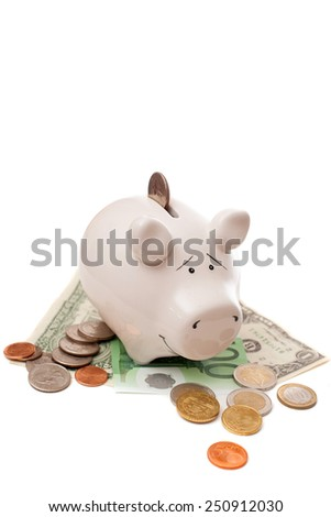 The coins insert into porcelain pig for saving - stock photo