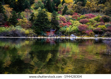 The color forest in Sichuan province of China