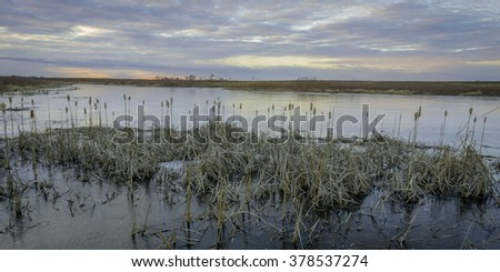 The colors of a winter twilight are reflected in the frozen surface of Crooked Slough as a winter day comes to an end.  Springbrook Prairie Nature Preserve, DuPage County, Illinois. - stock photo
