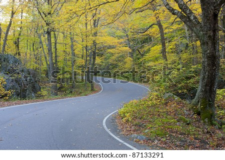 The Colors of Autumn - stock photo