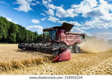 The combine working on the large wheat field - stock photo