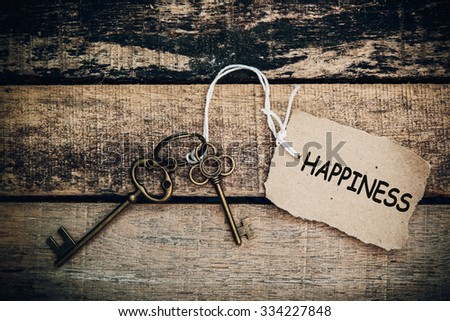 The concept of 'happiness' is translated by key and silver key chain - stock photo