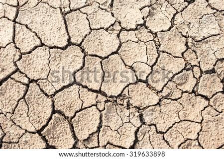 The cracked ground. - stock photo