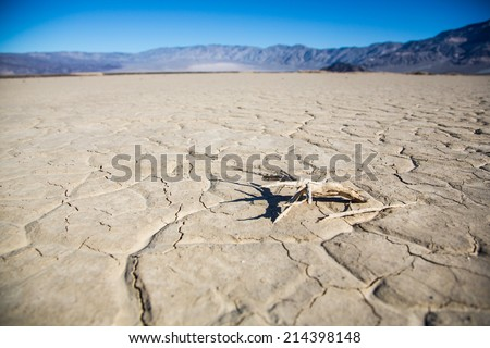 The cracked mud on the floor of a valley in Death Valley National Park. California, USA - stock photo