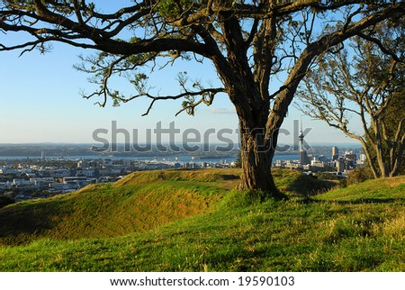 The crater of Auckland's Mount Eden volcano to left of shot, framed by a tree with the city skyline in the distance - stock photo