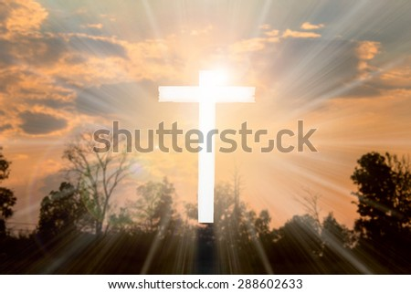 The cross on a white background nature colorful blur.