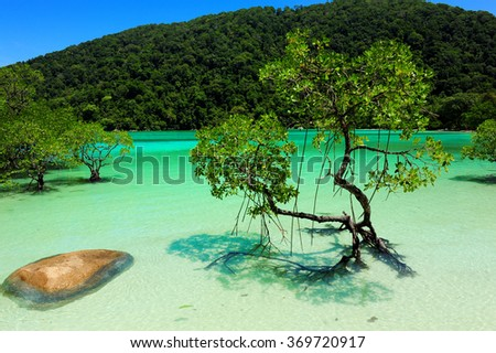 The crystal clear water and blue sky at Mu Koh Surin National Park, Phangnga (Thailand)