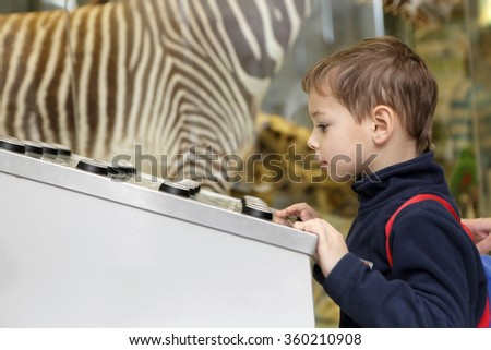 The curiosity child studying birdsong in the museum - stock photo