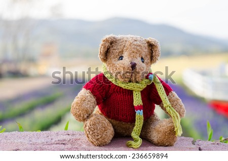 the cute teddy bear  in the park. - stock photo