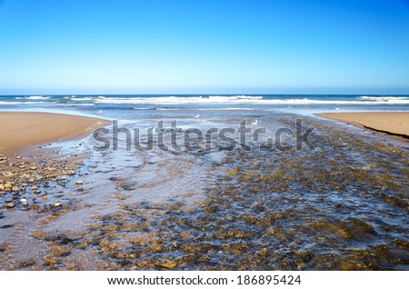 The D River, shortest in the world, flowing into the Pacific Ocean - stock photo