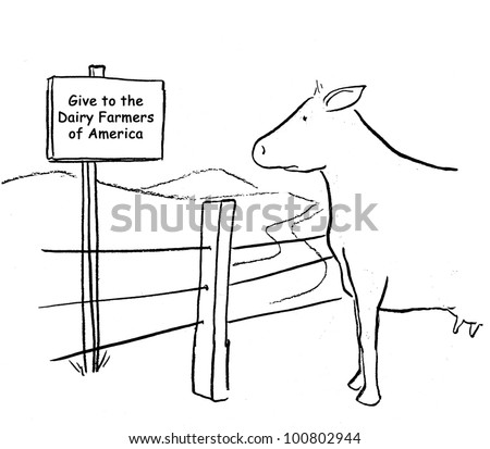 The dairy cow is surprised by the sign that says 'Give to the Dairy Farmers of America'. - stock photo