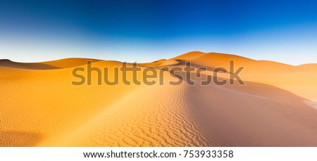 The desert in Africa and its dunes at sunrise with orange light and blue sky.