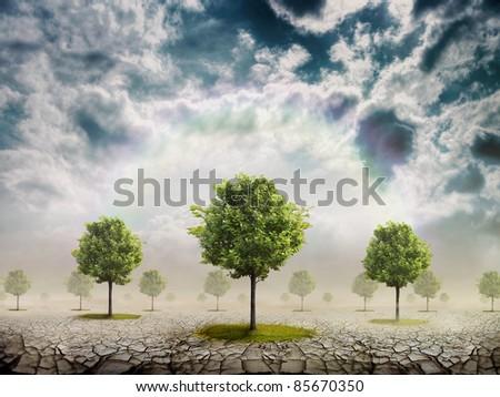 The desert where the trees grow - stock photo