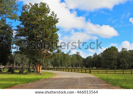 The dirt road in the countryside, fenced low sturdy fence
