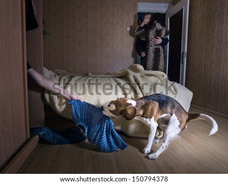 The dog has found the lover in a wardrobe - stock photo