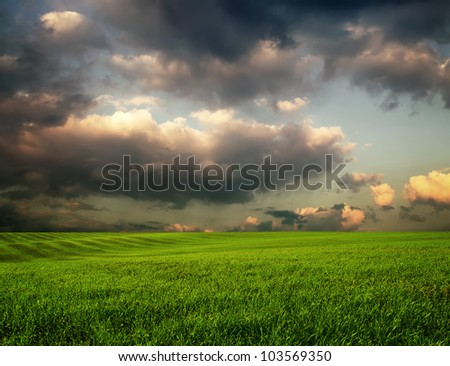 The dramatic clouds over nature field with grass - stock photo