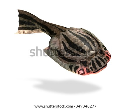 The Drepanaspis was a prehistoric fish that lived during the Devonian Period - 3D render.